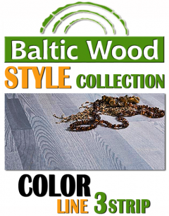 BalticWood - COLOR 3strip
