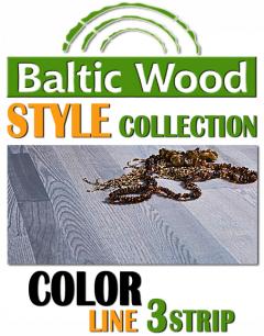 BalticWood - COLOR 3strip